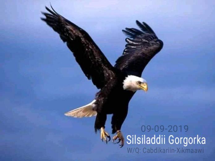 Silsiladdii Gorgorka: Q.5aad (WQ: Cabdikariin-Xikmaawi)