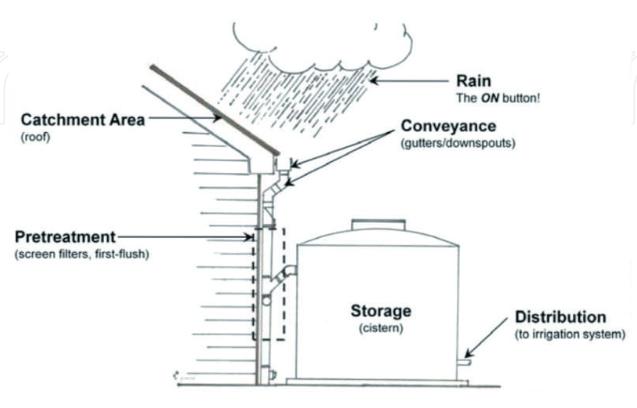 Sidee u Qabsannaa  Biyaha Roobka (Rainwater Harvesting )  (WQ: Adam Ducaale Cali)